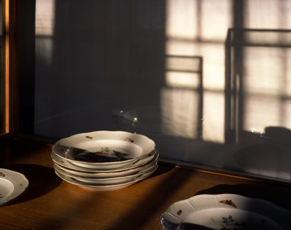 Meissen plates from the von Klemperer Collection (installation view)